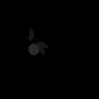 Tubi-60-Logo 475x475